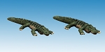 AA16 - Large Lizards / dwarf crocodiles