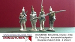 BG-NBR061  British/KGL Infantry - Grenadier Co. Firing Line - trousers/w backpacks - stovepipe shako (all 6 variants)