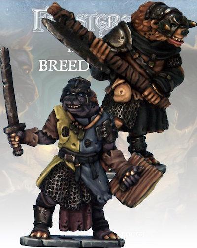 Frostgrave - FGV219  Gnoll Knight and Templar